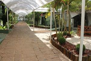 A Green School fica numa área de 5 mil metros de área verde em Indaiatuba